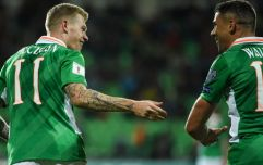Jonathan Walters calls for better support for James McClean