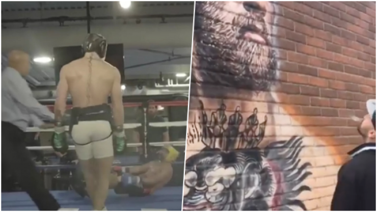 Paulie Malignaggi criticised for spitting on Conor McGregor mural