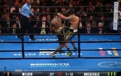 Wilder targeting Joshua after devastating Breazeale knockout