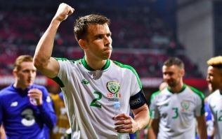 Seamus Coleman sticks it to Denmark with cutting post-match comment