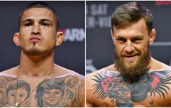 'Anthony beats Nate, and Conor is next on the horizon'