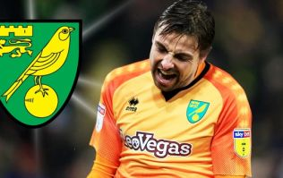Norwich City fans living it up with cheaper tickets on the way