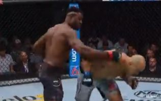 Francis Ngannou stops Junior dos Santos with ruthless finish