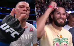 "Nate Diaz calls out ""gangster"" Jorge Masvidal after beating Anthony Pettis"
