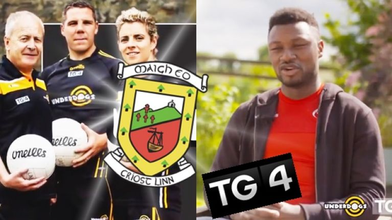 Mayo challenge set as Underdogs panel named