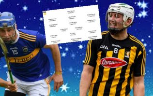The All-Star 15 of the best hurlers over the last five years