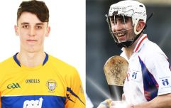 Limerick and Clare's finest a deadly duo for Electric Ireland Fitzgibbon feast