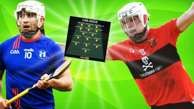 Team of the Fitzgibbon Cup