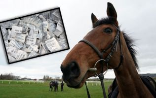 The monster each way bet for Cheltenham day one that you should be on