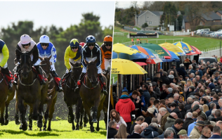 Sport, friendship and even love: The magic of the races