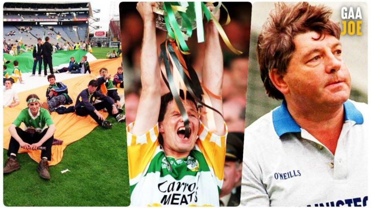'Sheep in a heap' become kings of Ireland - The crazy hurling summer of 1998