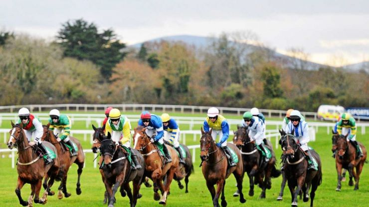 Fines and suspensions in Tipperary after stewards enquiry