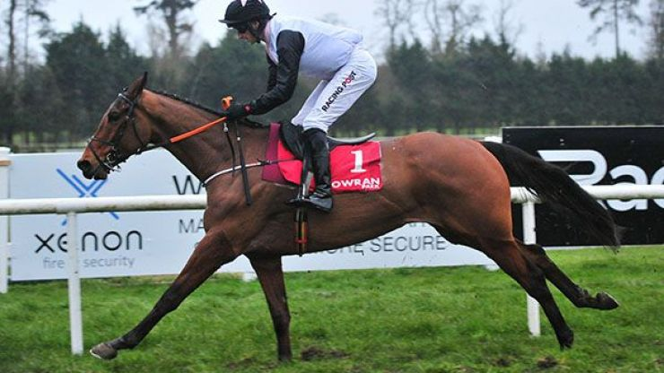 10 horses to follow for the 2020/21 national hunt season